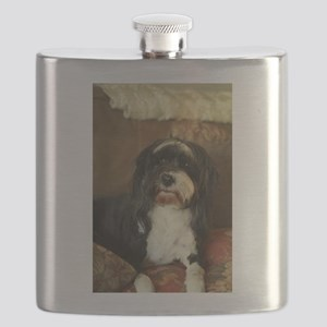 indoor dogs floppy ears,Konnor Tibetan terri Flask
