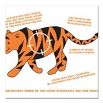 Tiger Facts Square Car Magnet 3