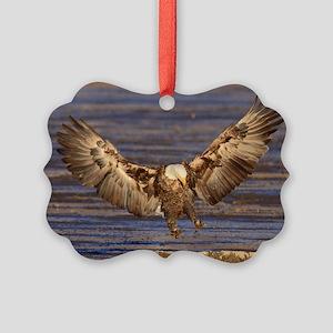 Landing Spot Picture Ornament