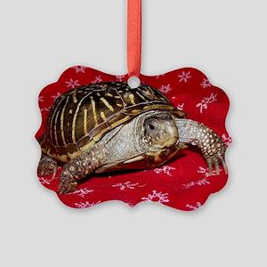 Turt Picture Ornament