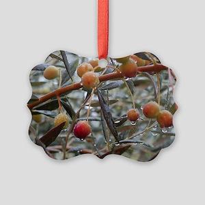 Rain & Olives Picture Ornament