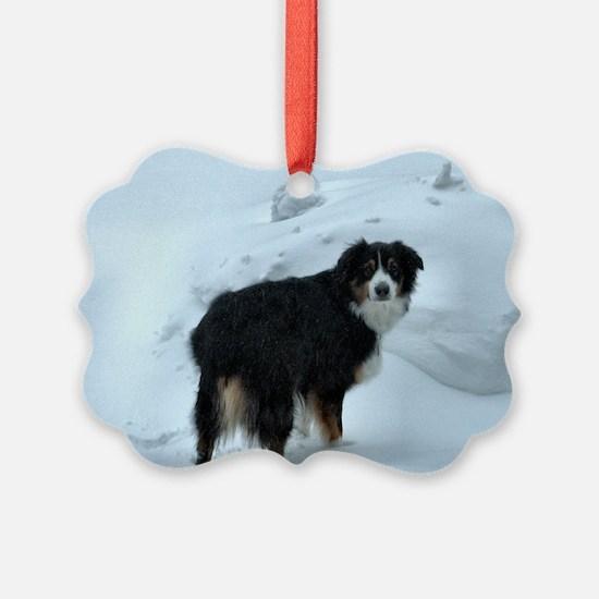 Mr. Syd Picture Ornament