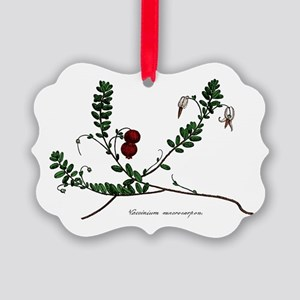 Cranberry Color Engraving Picture Ornament0