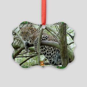 #005 Sundari Leopard Christma Cards (20 Pk)