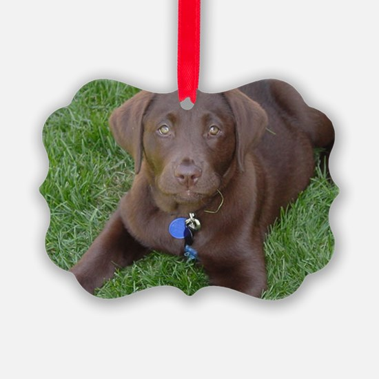 Chocolate Lab Grass Ornament