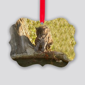 Fishing Cat Picture Ornament