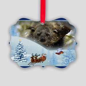 Bearcat Picture Ornament