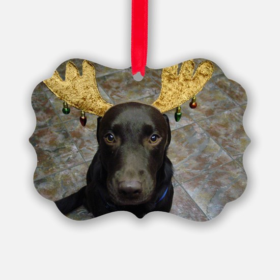 Chocolate Lab Chip Ornament