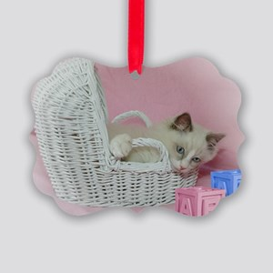 Fur Baby Ragdoll Cat Picture Ornament (Pk of 20)