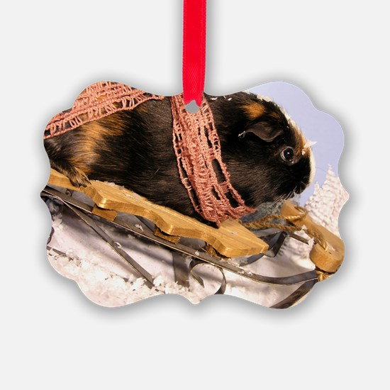 Sledding Jimmy! Ornament