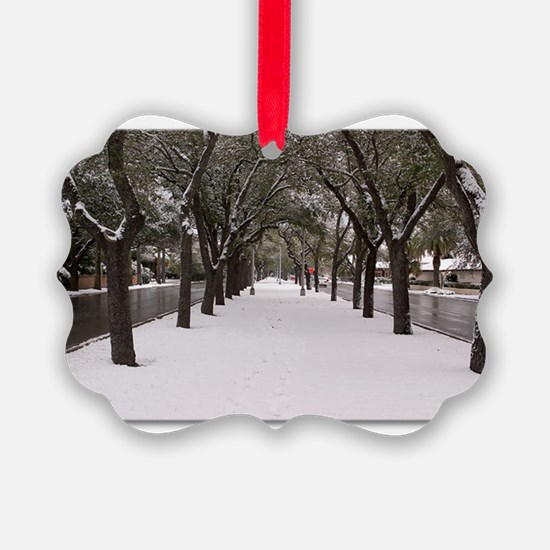 Cute Texas christmas Ornament