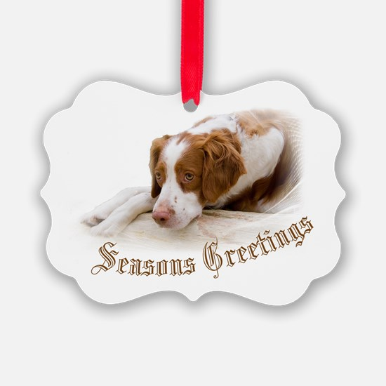 Cute Holiday and occasion Ornament