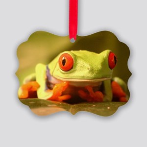 Frog Picture Ornament