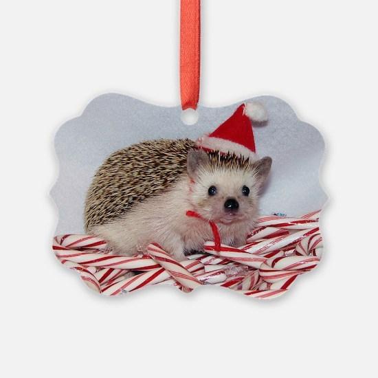 Maizy Ornament