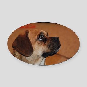 Dog-puggle Oval Car Magnet