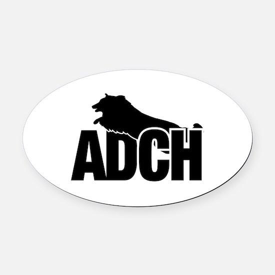 ADCH Shetland Sheepdog Sheltie