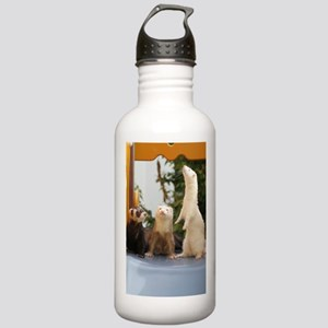 Adorable Trio Stainless Water Bottle 1.0L