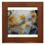 Moments in time!006 Framed Tile