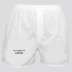 Cedarville: Best Things Boxer Shorts