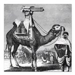 Camel With Machine Gun Square Car Magnet 3