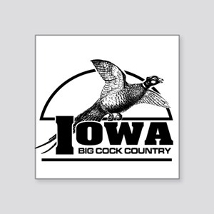 Iowa: Big Cock Country Square Sticker