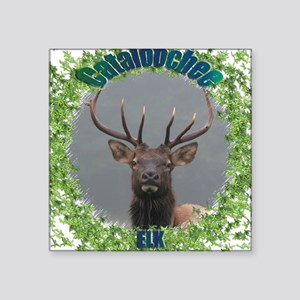 Cataloochee Elk Square Sticker