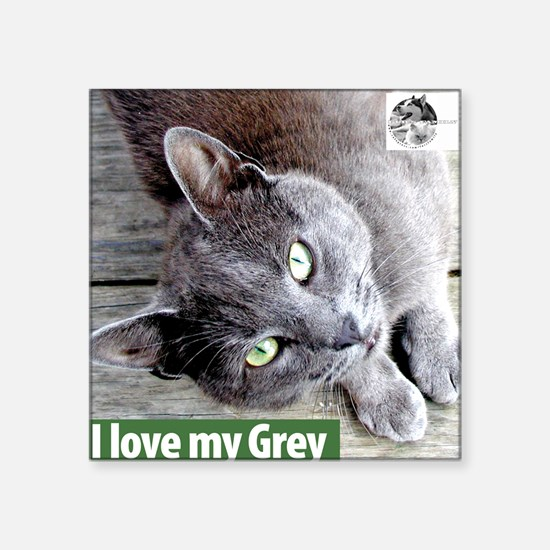 Grey Cat Square Sticker