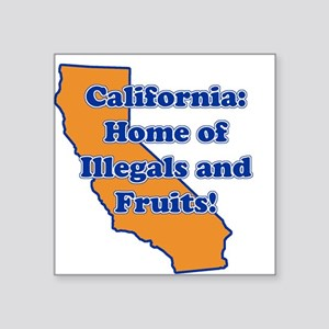 Home of illegals and fruit Square Sticker
