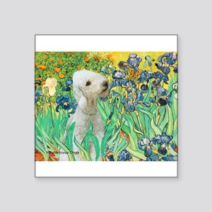 "Irises /Bedlington T Square Sticker 3"" x 3"""