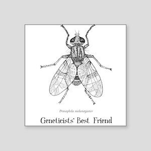 Geneticists' Best Friend Square Sticker