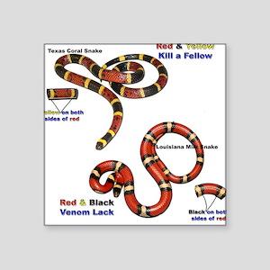 Coral Snake/Milk Snake Square Sticker