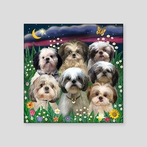 7 Shih Tzu Darlings Square Sticker