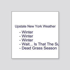 Upstate NY Weather Square Sticker