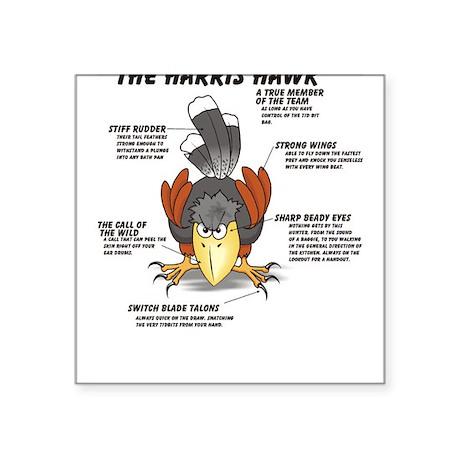 The Harris Hawk Square Sticker