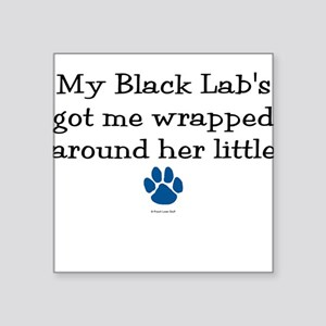 Wrapped Around Her Paw (Black Lab) Square Sticker