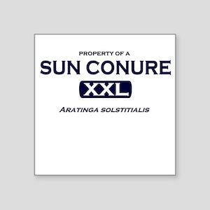 Property of Sun Conure Square Sticker