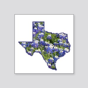 TX Bluebonnets Square Sticker
