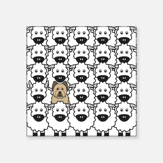 Briard in the Sheep Square Sticker