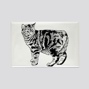 Manx Cat Rectangle Magnet