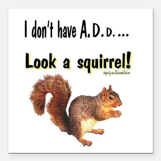 ADD Squirrel Square Car Magnet