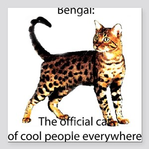 Cool people love bengals Square Car Magnet