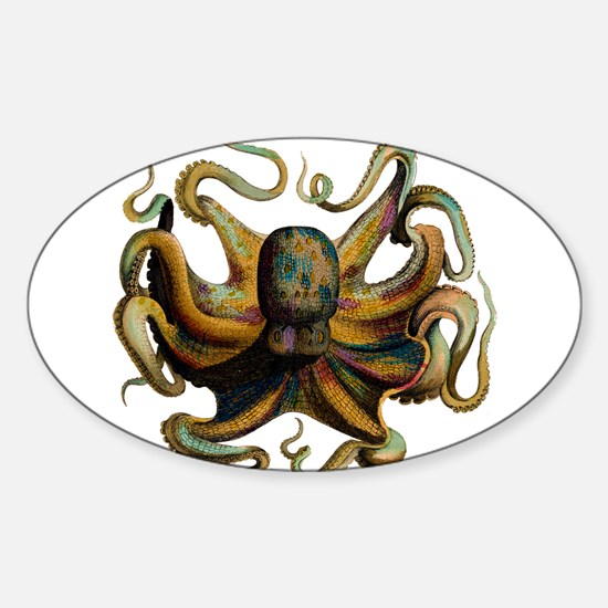 Colorful Octopus Swirling Tentacles Sticker (Oval)