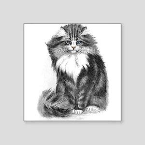 """catbwxtrans.png Square Sticker 3"""" x 3"""""""
