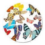 butterfly836h0106trans Round Car Magnet