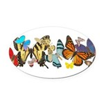 butterfly836h0106trans Oval Car Magnet