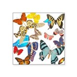 butterfly836h0106trans Square Sticker 3