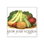 growyourveggies1 Square Sticker 3