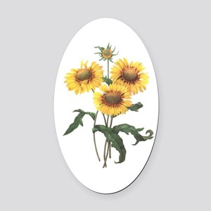 Redoute Sunflowers Oval Car Magnet
