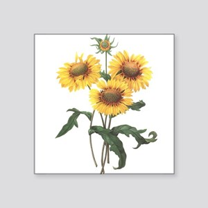 """Redoute Sunflowers Square Sticker 3"""" x 3&quot"""