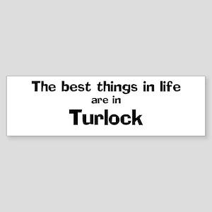 Turlock: Best Things Bumper Sticker
